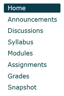 Canvas site menu: Home, Announcements, Discussions, Syllabus, Modules, Assignments, Grades, Snapshot